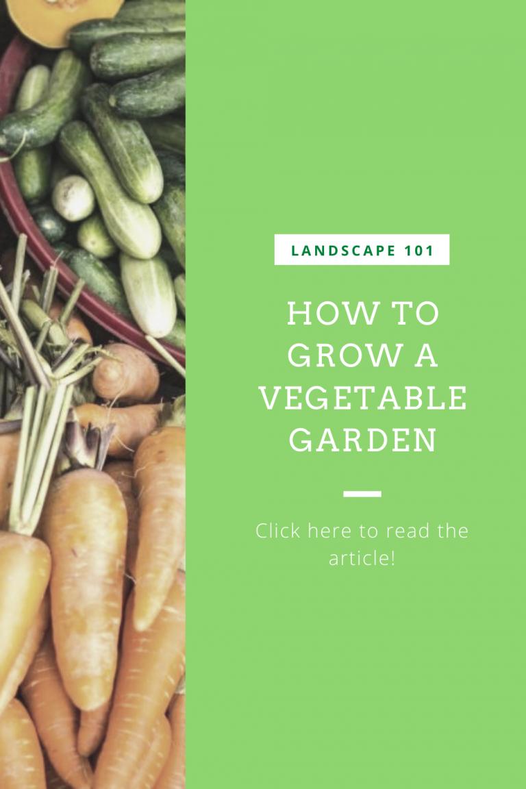grow vegetable garden