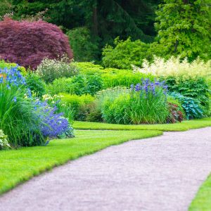 10 Easy and Simple Landscaping Ideas